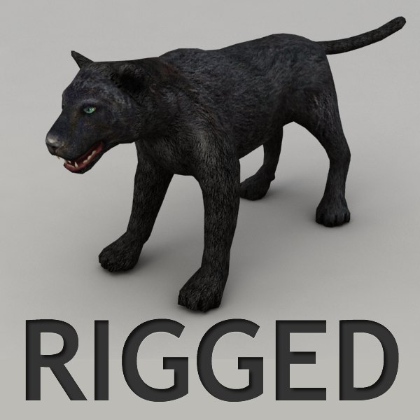 Panther Rigged