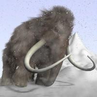 cartoon mammoth 3D models