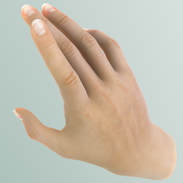 Hand Female 3D Models