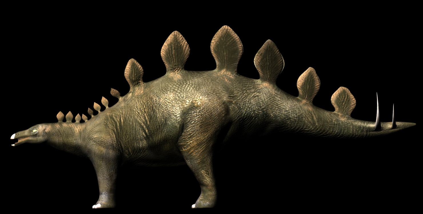 Stegosaurus Rigged