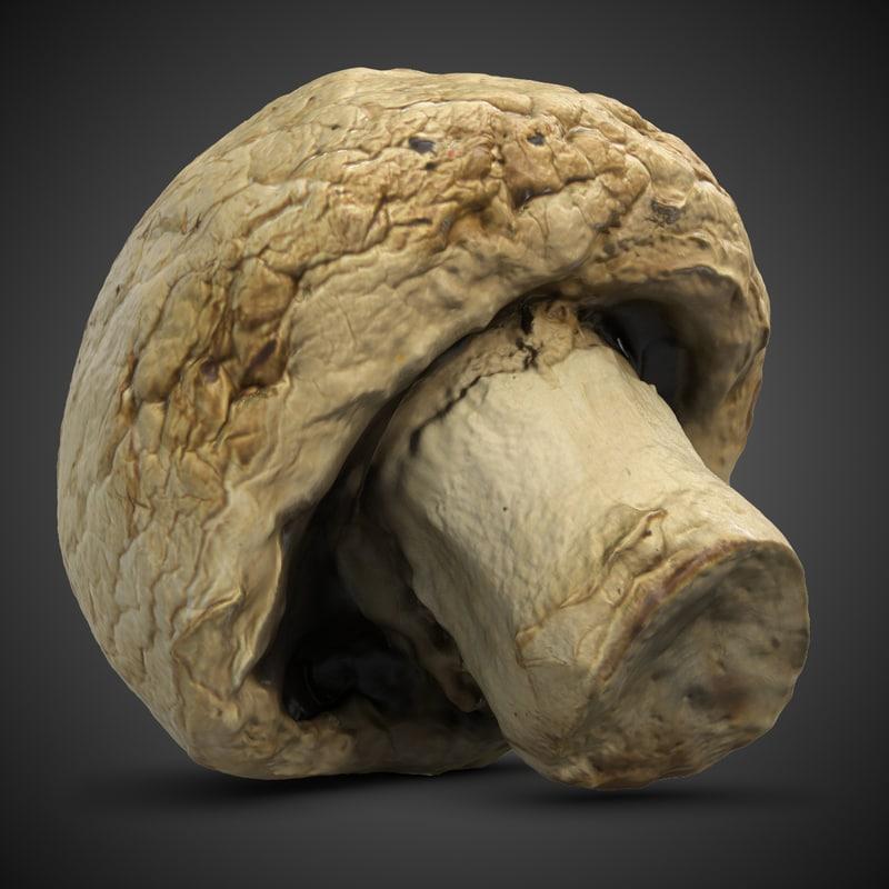 Mushroom5-3chkDark.jpg