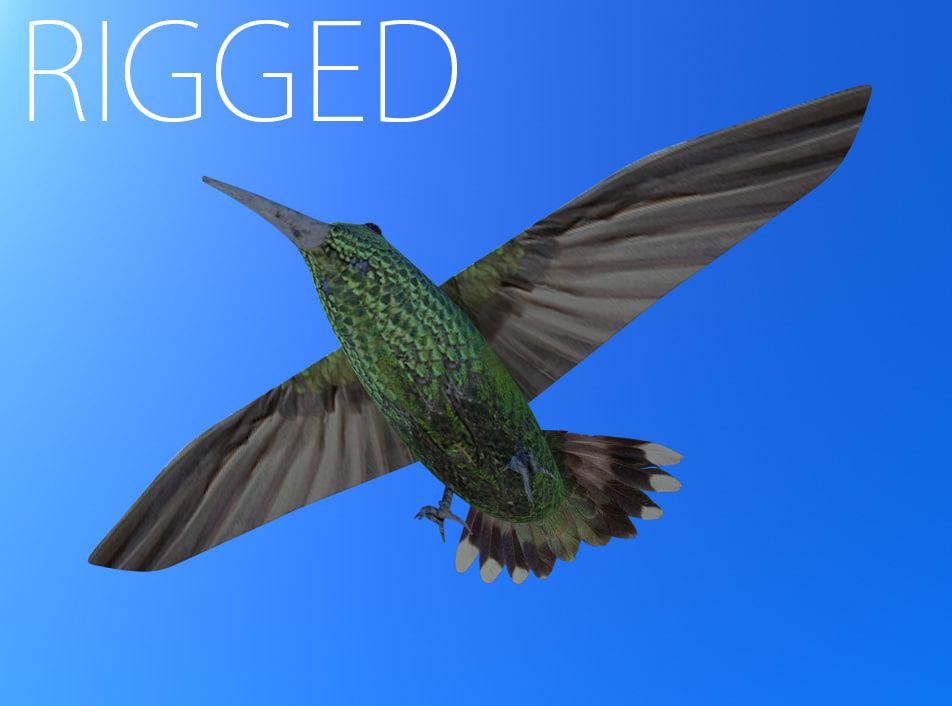 Maya rigged humming bird