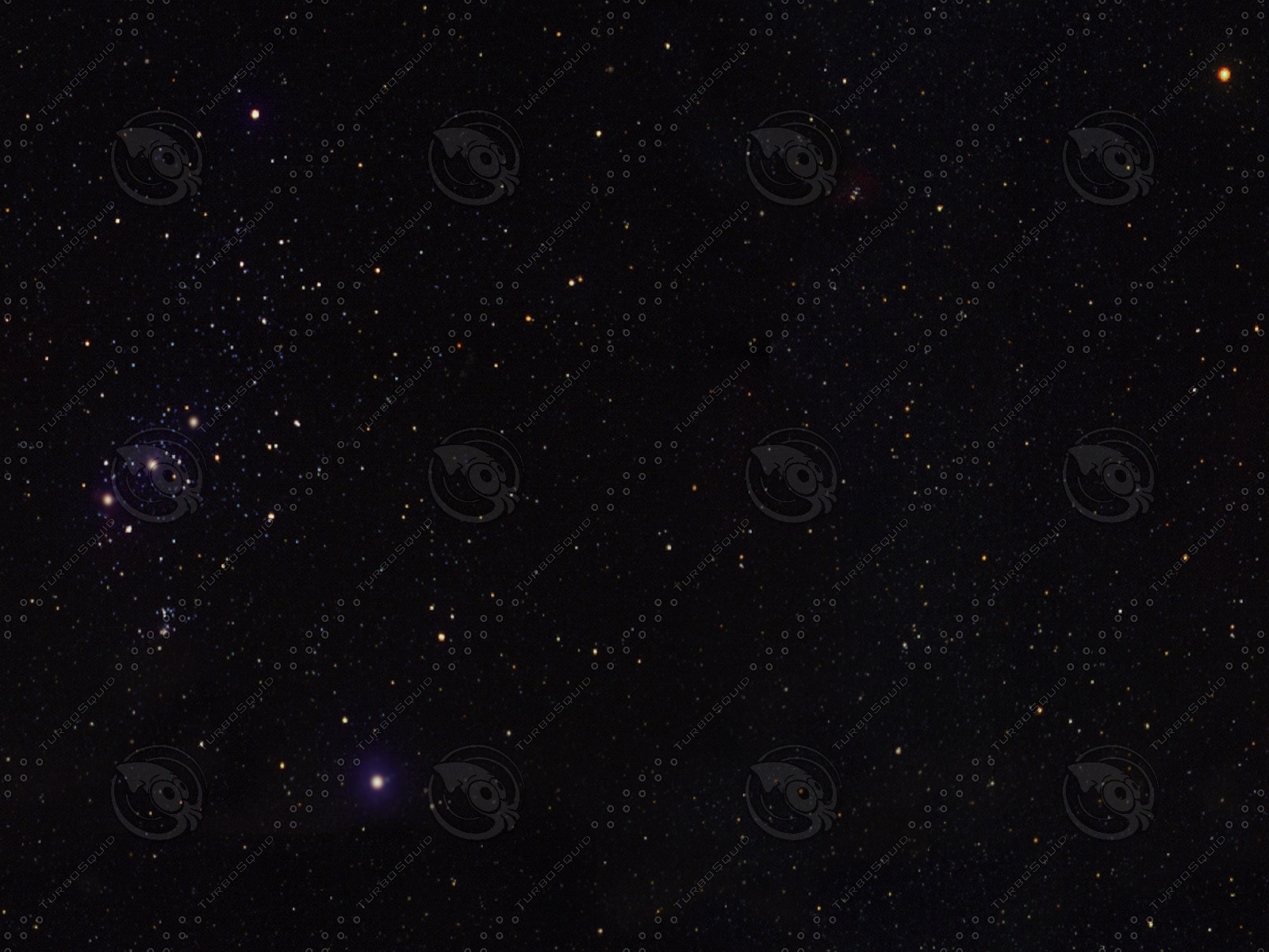star06XL.jpg