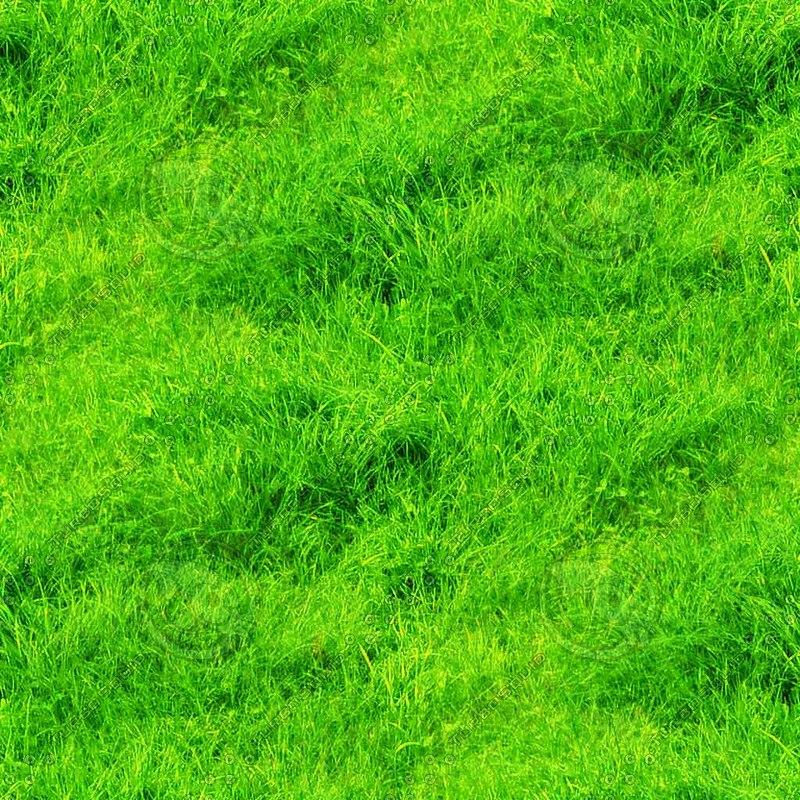 grass1024x1024.jpg