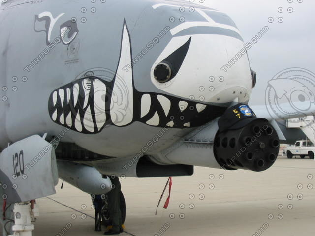 A-10 Business End.JPG