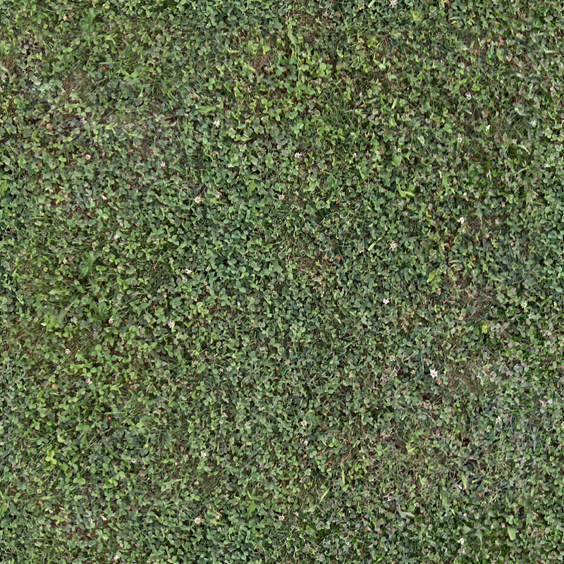 grass001_s_b_2048.jpg