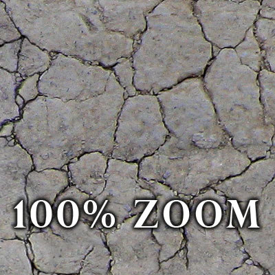 High resolution Cracked dry earth ground + Bump Map Texture Maps