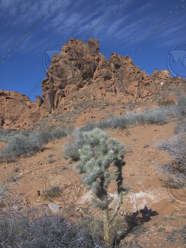 USA_NV_Valley-of-Fire_0402.png