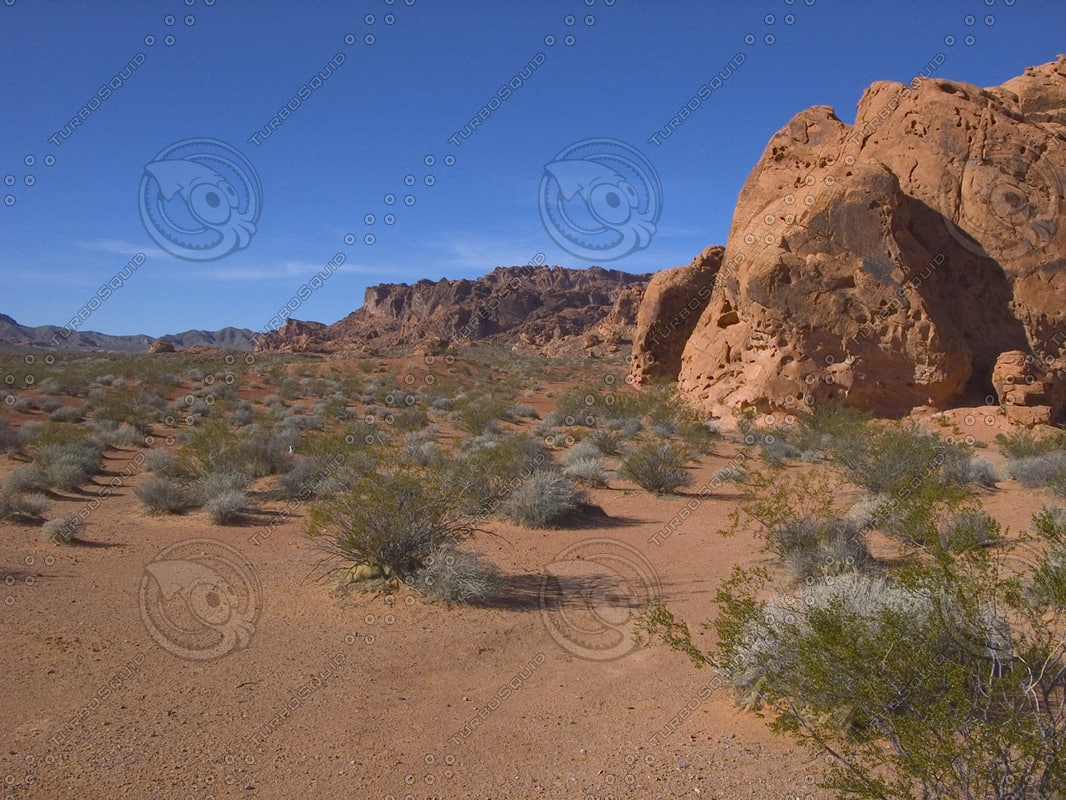 USA_NV_Valley-of-Fire_0405.png