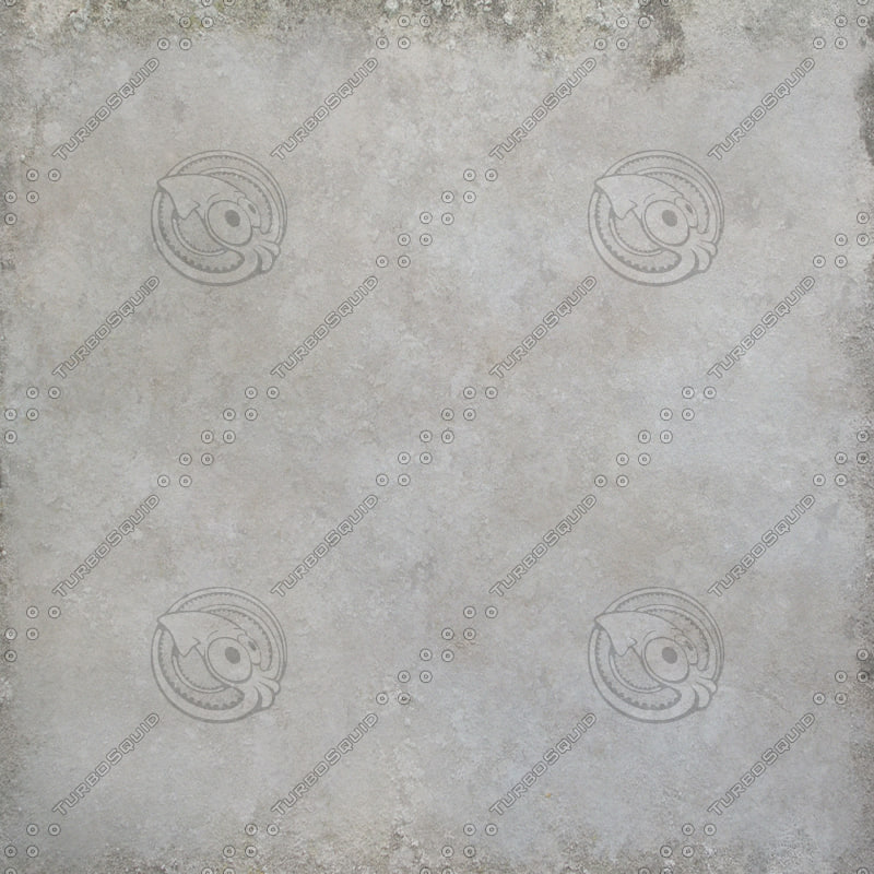 moldyplasterwall.jpg