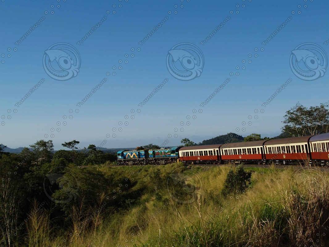 Train_Train_Tracks_1.jpg