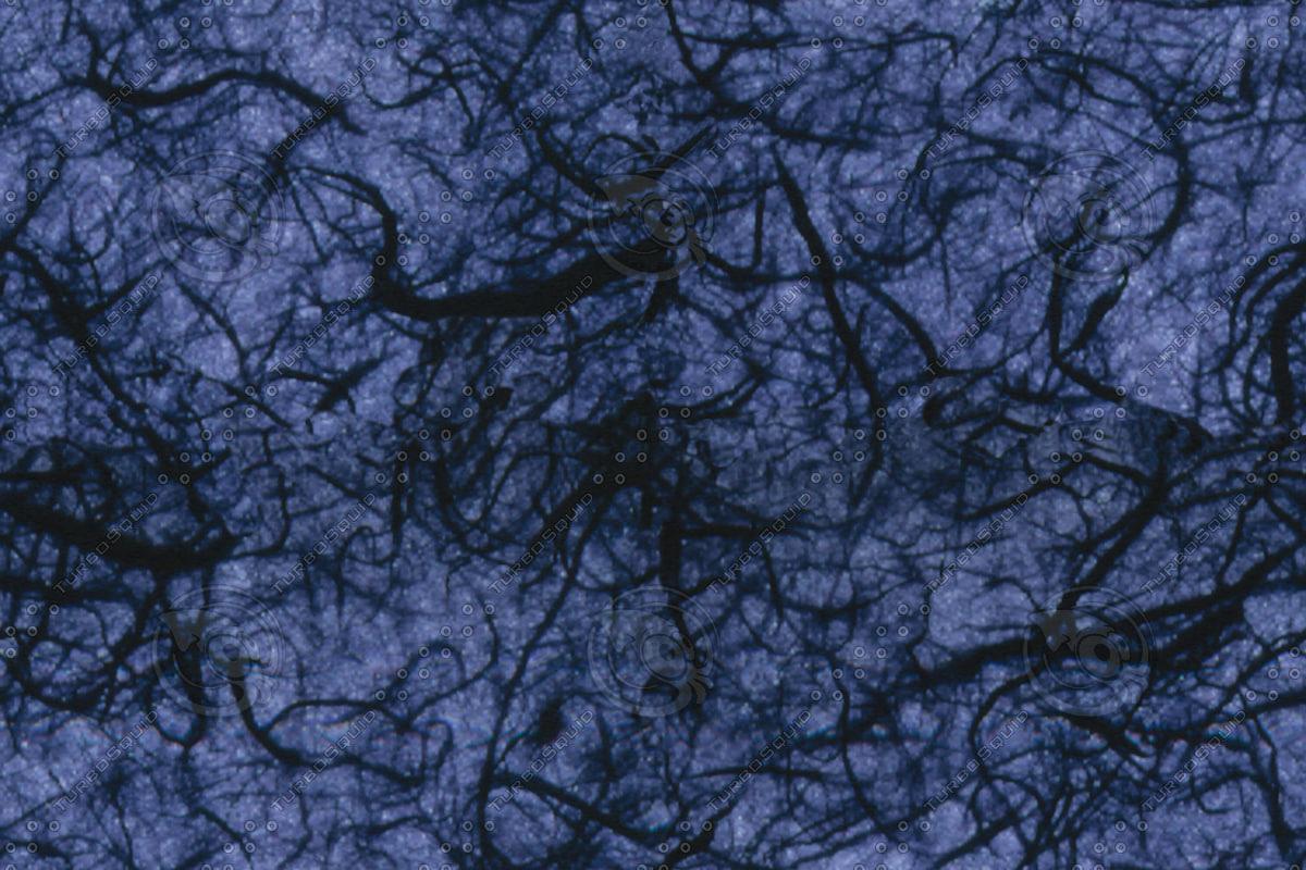 Alientexture005-Abbagrabba.jpg