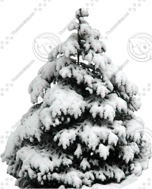 wintertree04.psd