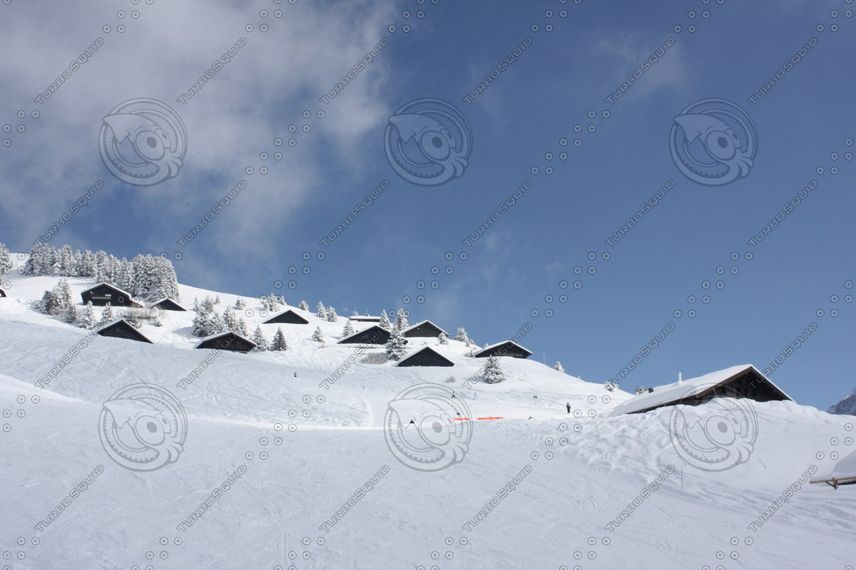 snow covered mountain with huts.JPG