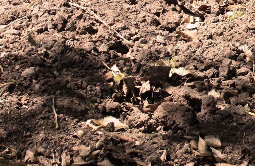 ground&soil011.jpg