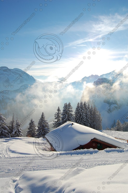 snow hut landscape_fairy tale.JPG