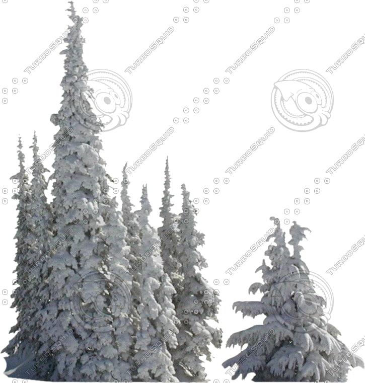 wintertree11.psd