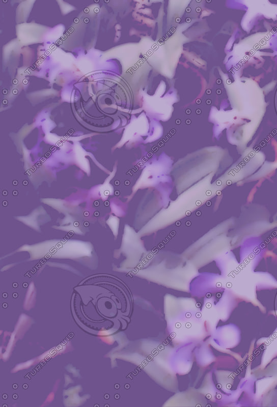 Bradyzign - orchid background 09 sub.jpg