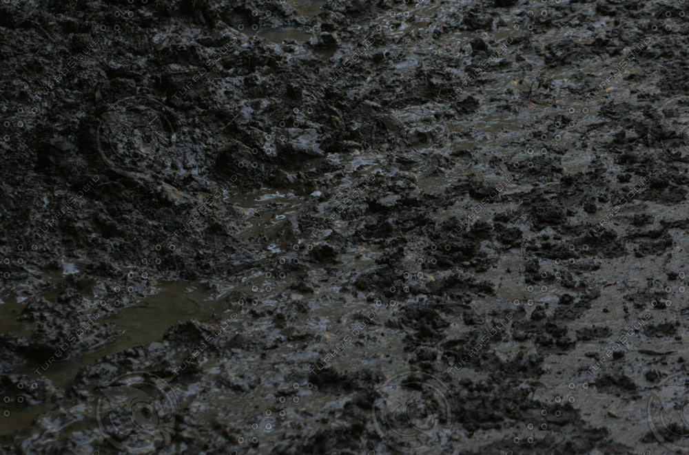 ground&soil041.JPG