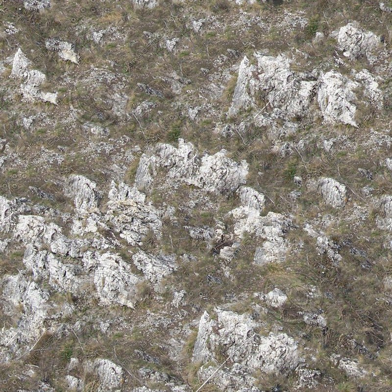 grass_and_rocks0001-tile.jpg