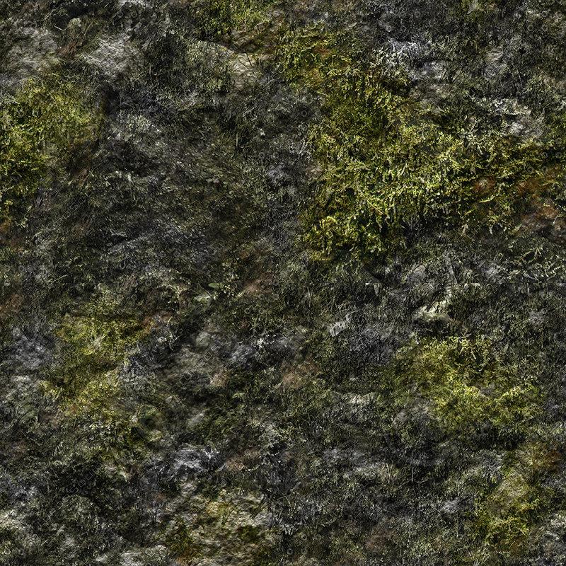 Texture jpg mossy moss rock
