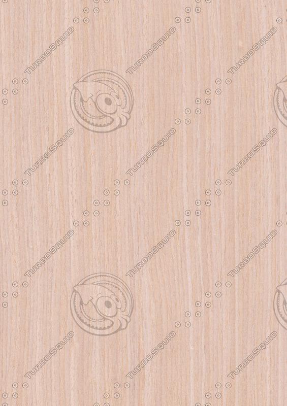 oak_02.jpg