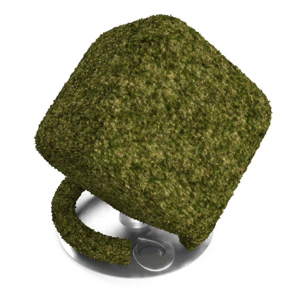 Lawn-default-cube.jpg