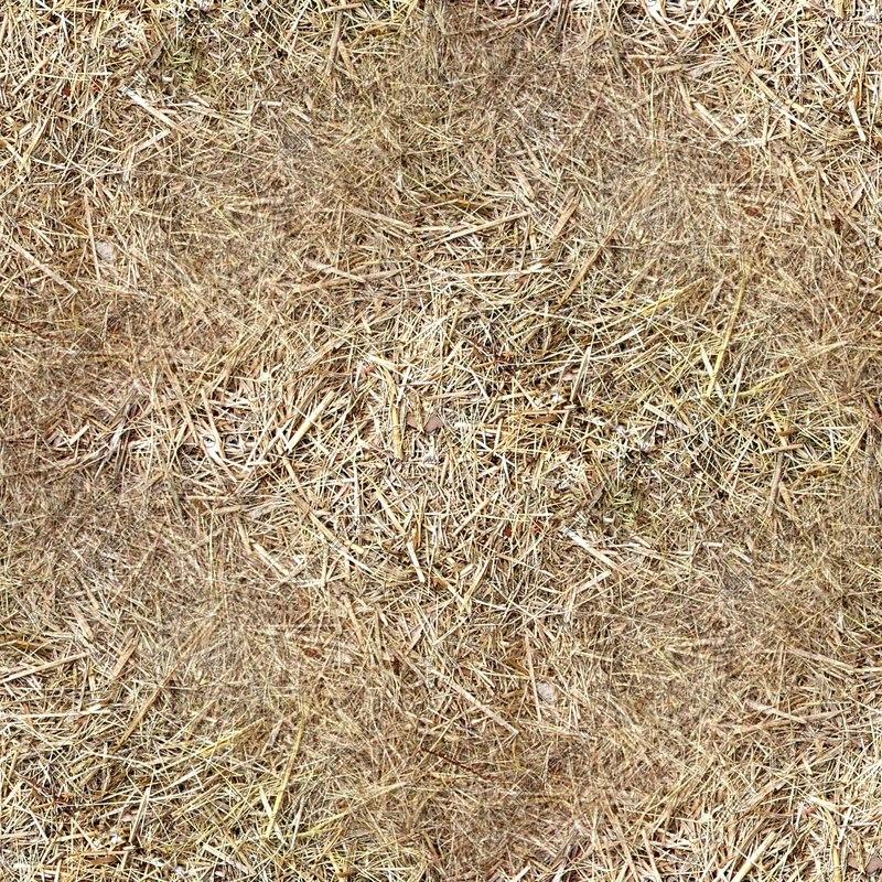 straw_texture.jpg