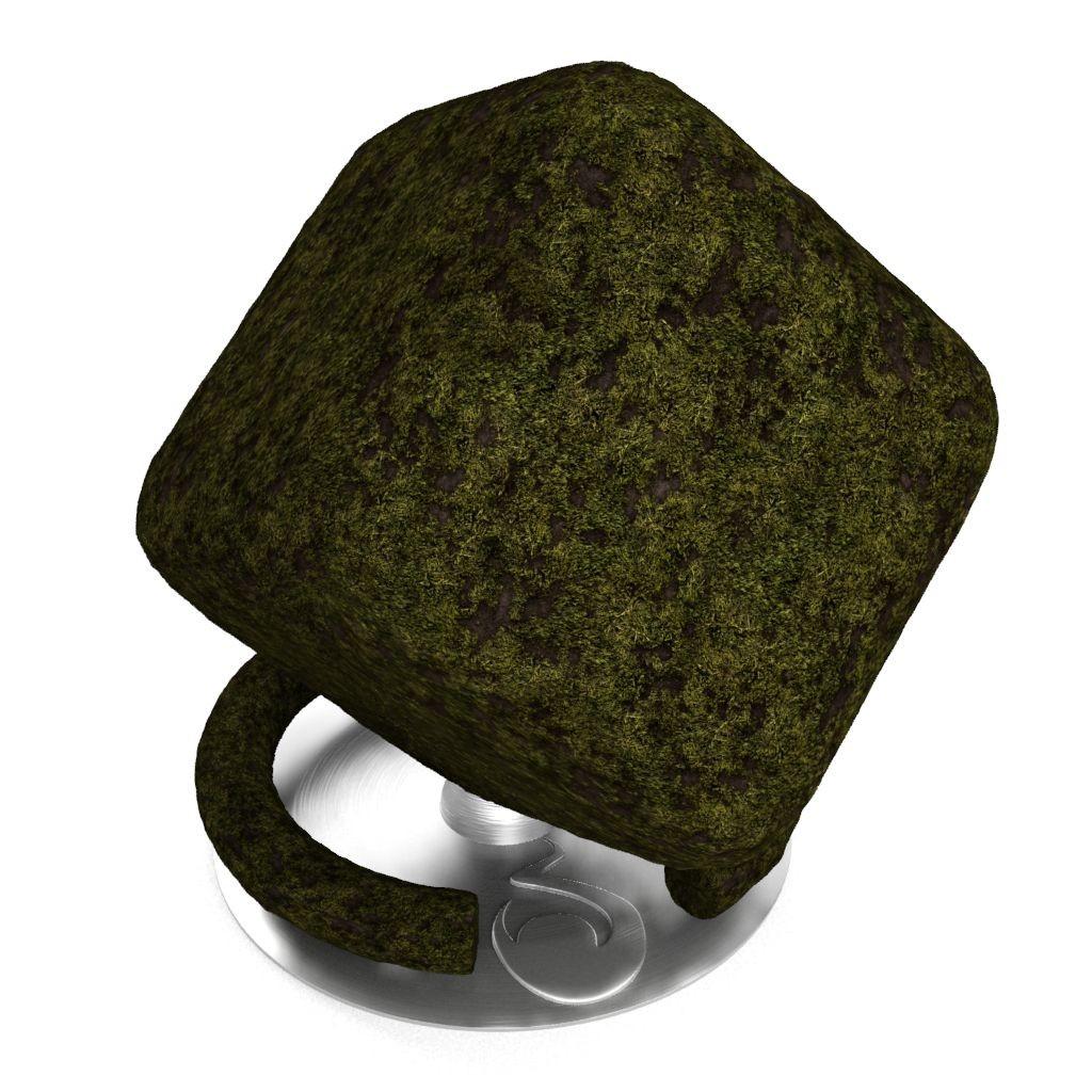 Grass_01-default-cube.jpg