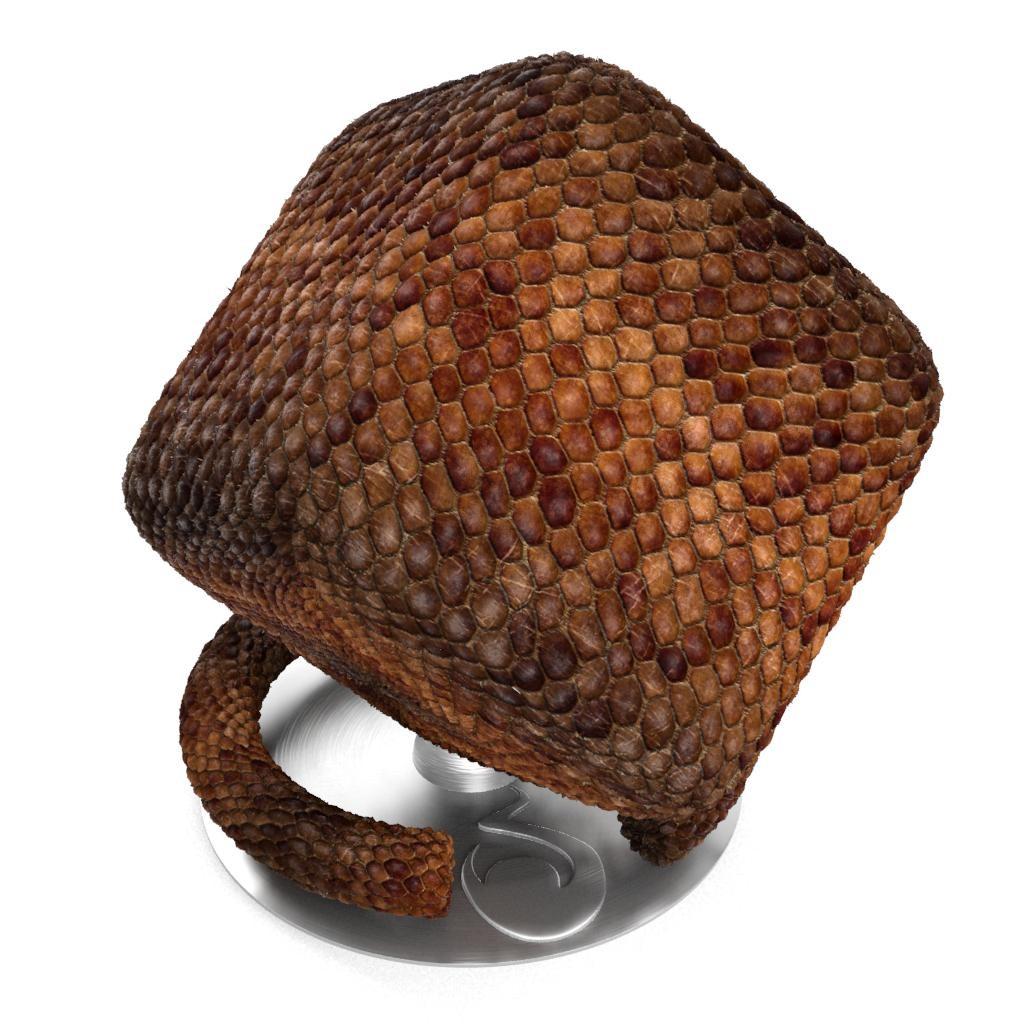 Snake_Skin_001-default-cube.jpg