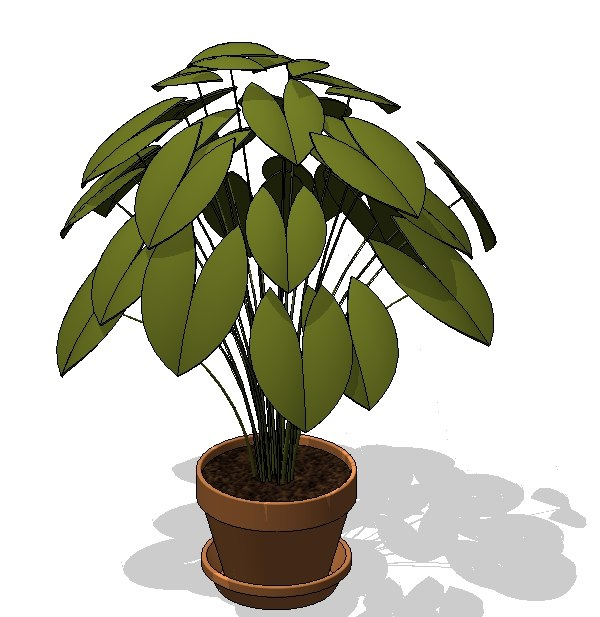 Potted Plant 2.jpg