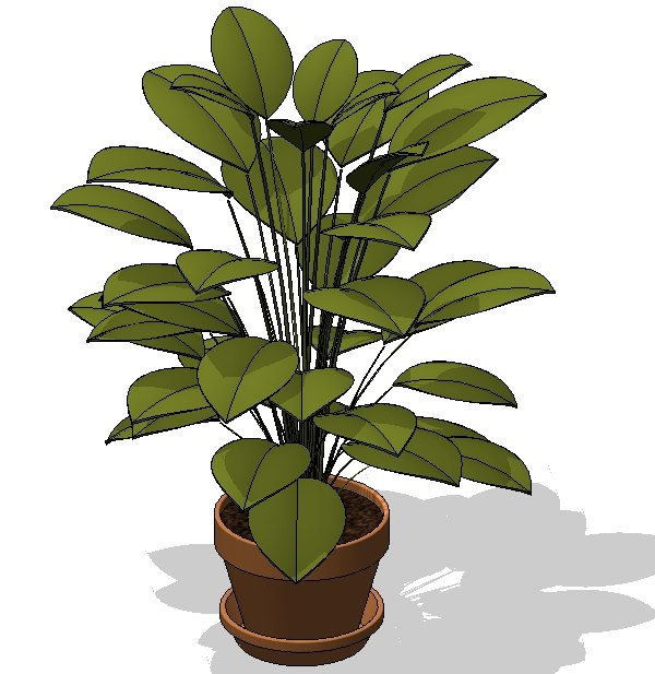 Potted Plant 1.jpg