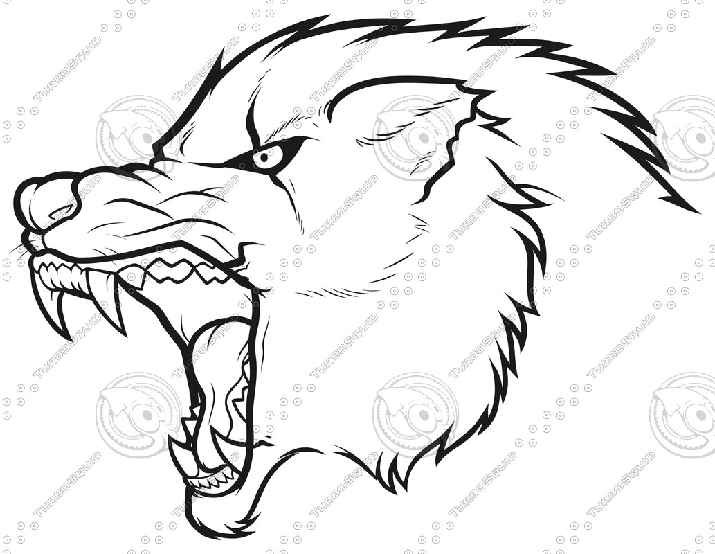 angry animal drawing - photo #13