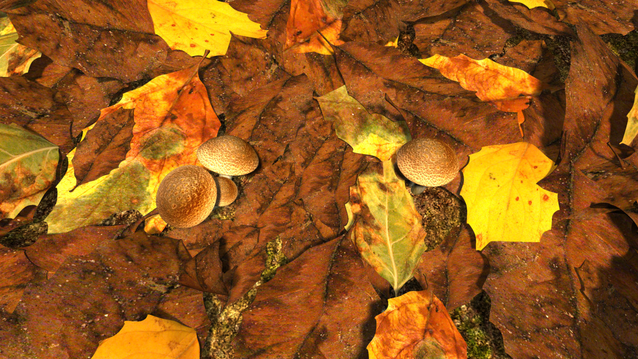 Decomposed leaves_01.png