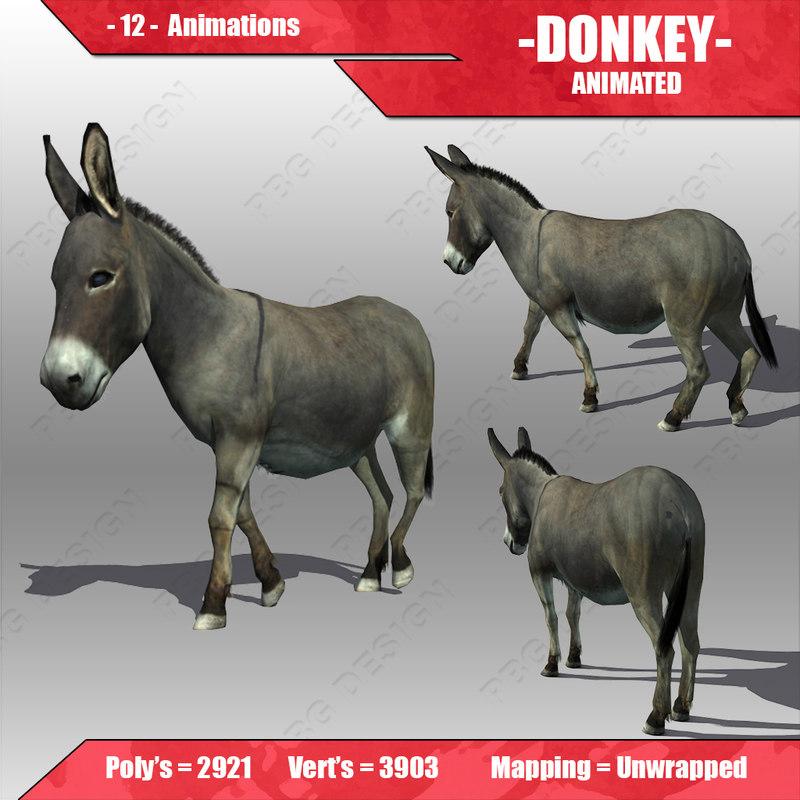 Donkey Animated