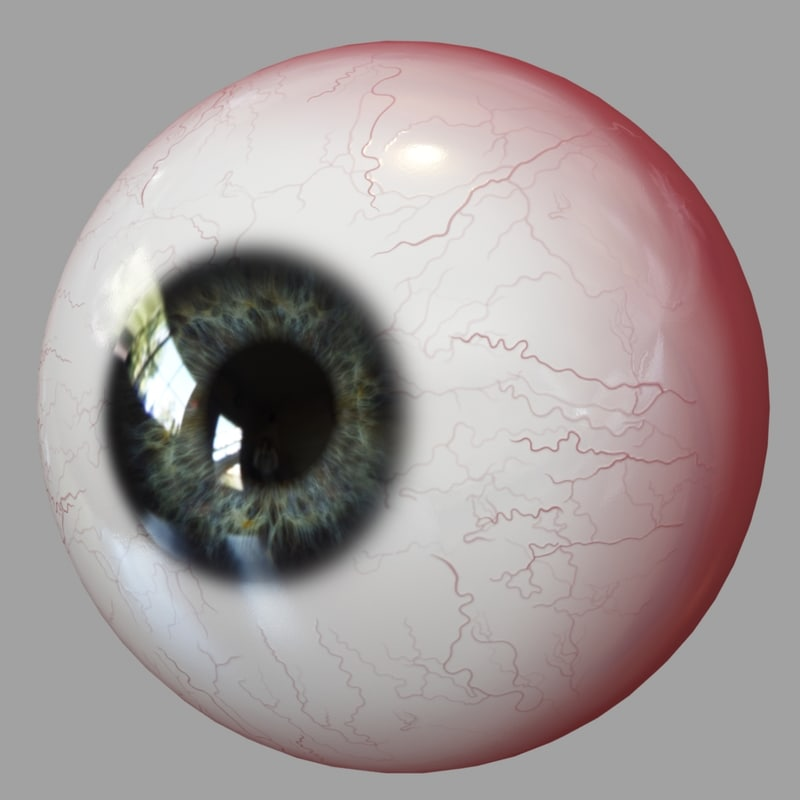 3d model eyes human realistic eyeball