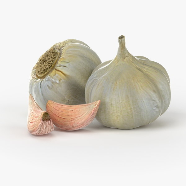 Realistic Garlic 3D Models