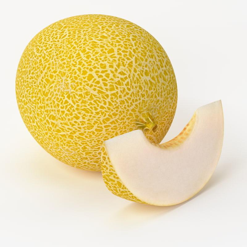 Realistic Melon