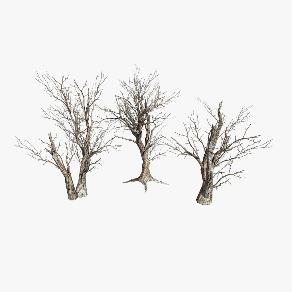 deadTrees_final.png
