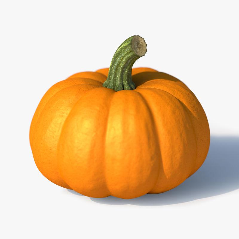 pumpkin-00.jpg