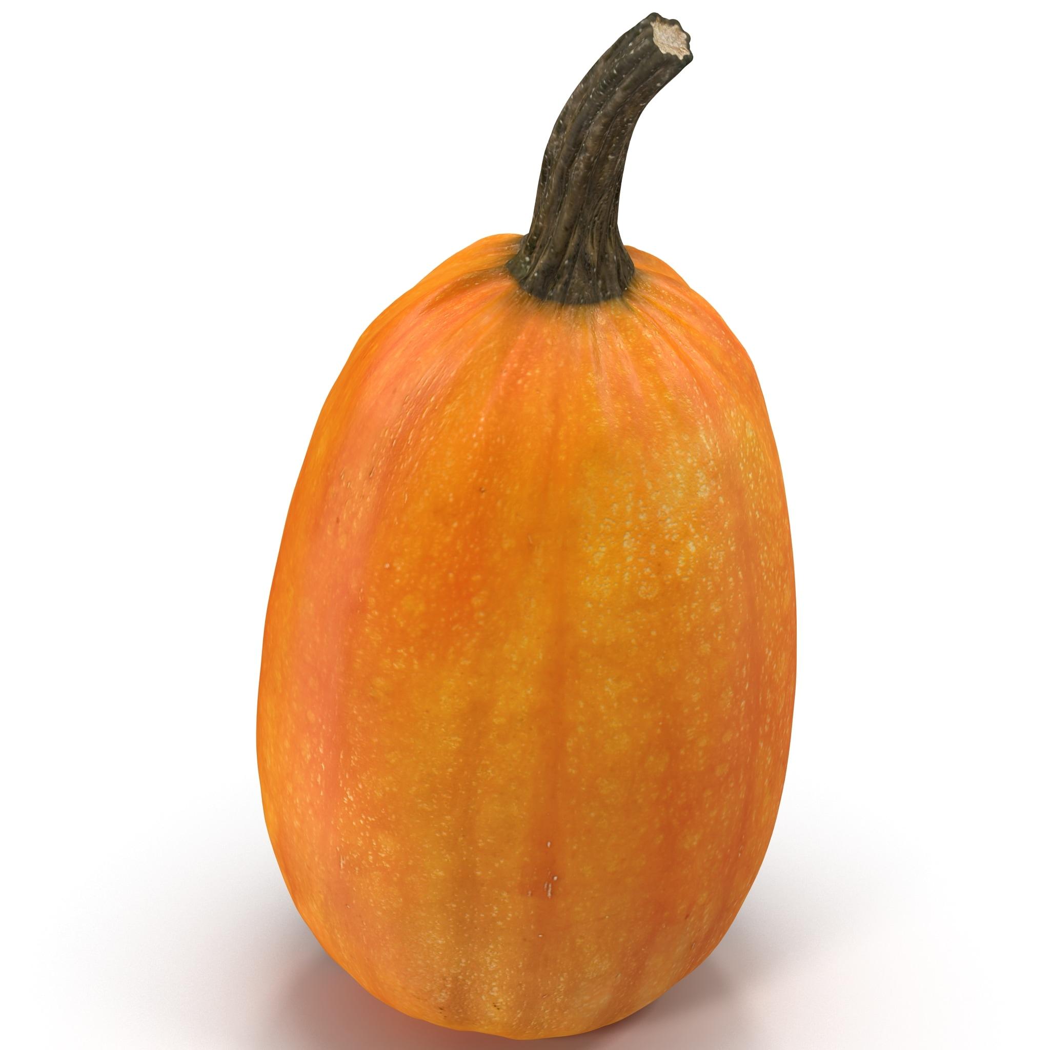Pumpkin patch models 2014