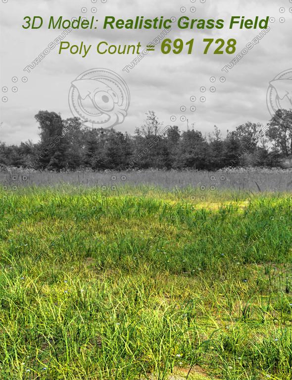 3D Model: Grass Field