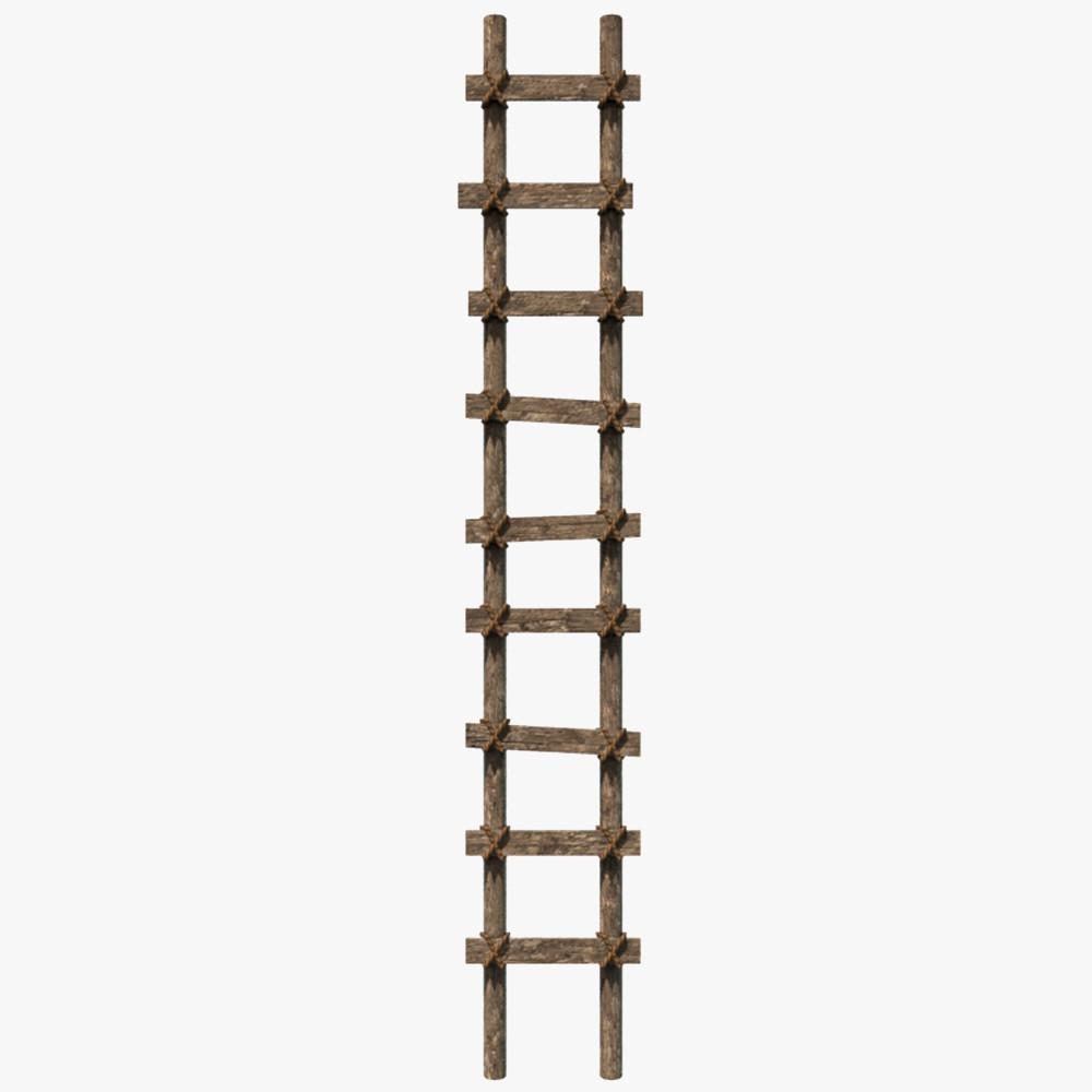 Ladder1_00.jpg