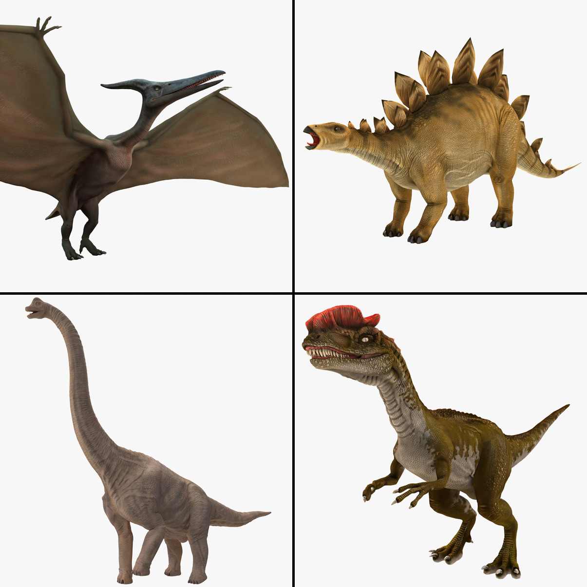 Dinosaurs Rigged Collection 2