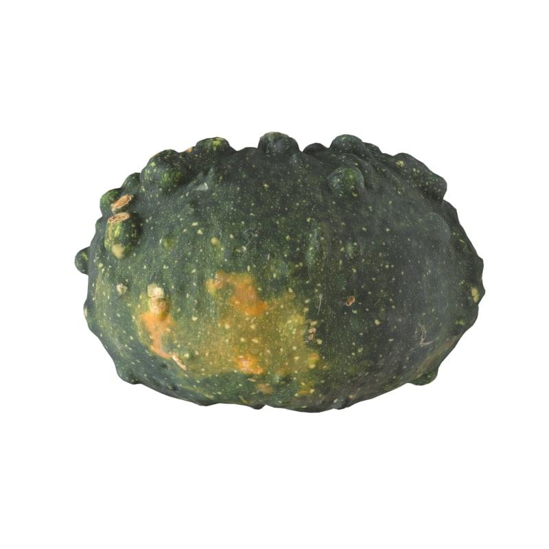 Pumpkin Scan 3D 6