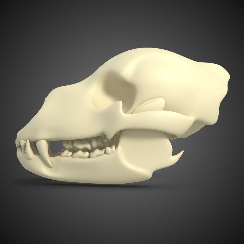 BearSkull-2chkDark.jpg