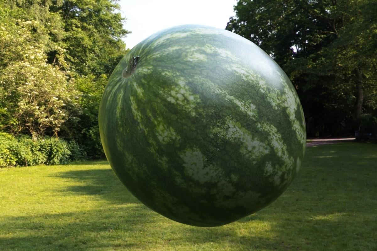 watermelon super realistic