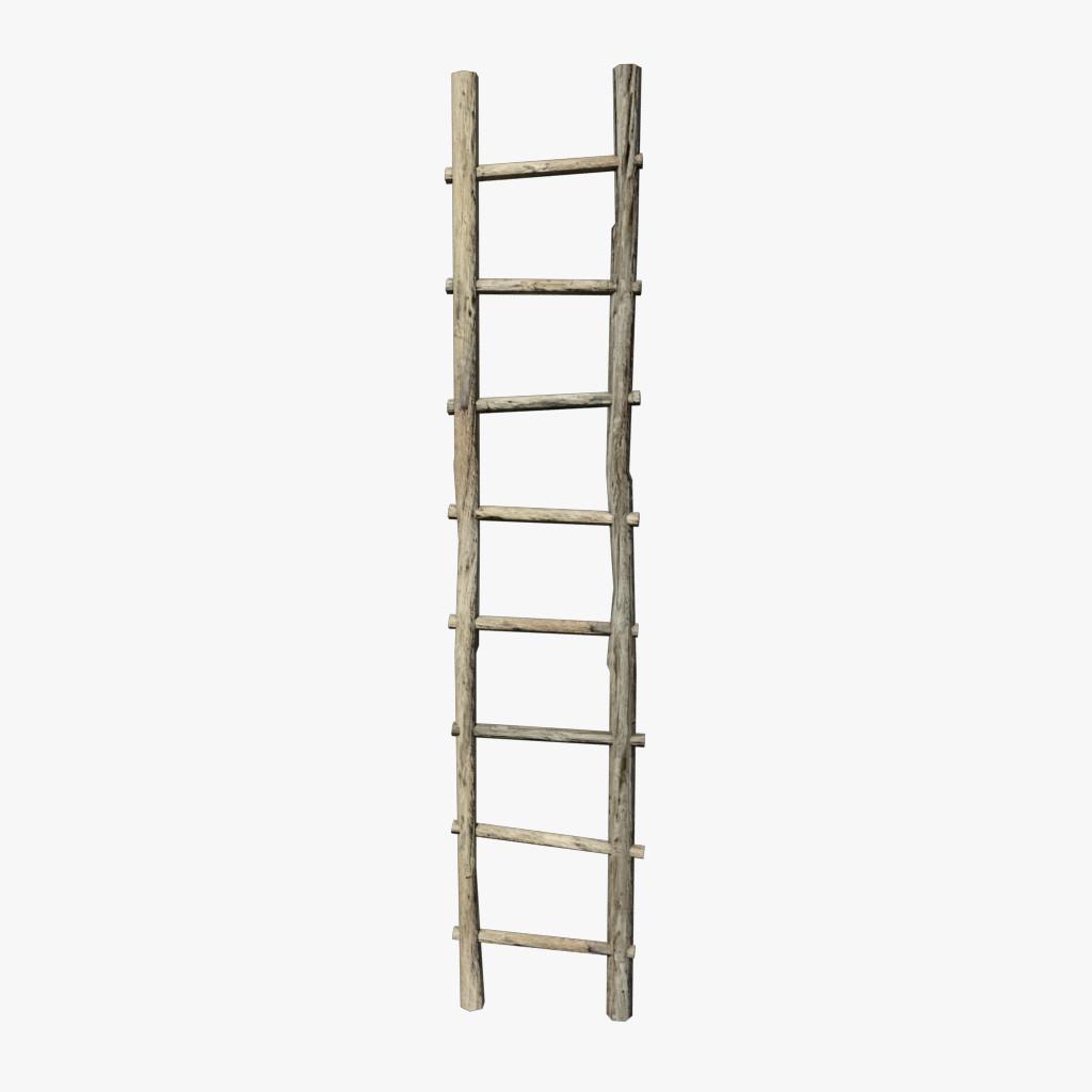 SM_Ladder_a_final.png