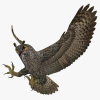 owl 3D models