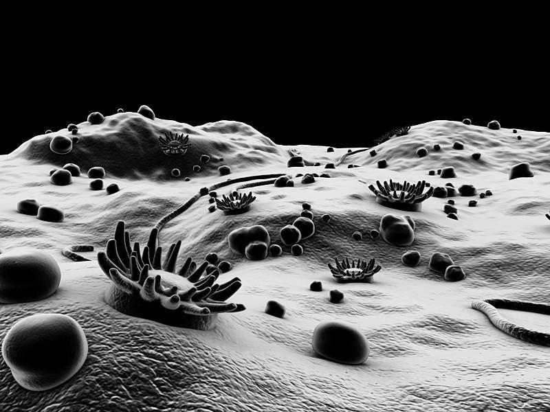 MicroscopicLandscapeIII.5.png